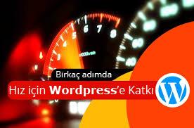 wordpress-hizlandirma